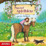 Cover-Bild zu Ponyhof Apfelblüte 3. Lotte und Goldstück (Audio Download) von Young, Pippa