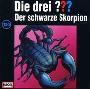Cover-Bild zu Die Drei ??? 120. Der schwarze Skorpion