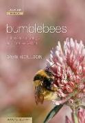 Cover-Bild zu Bumblebees von Goulson, Dave (University of Stirling, UK)