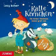 Cover-Bild zu Kalle Körnchen. Ein kleiner Sandmann kommt groß raus (Audio Download) von Astner, Lucy