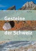 Cover-Bild zu Gesteine der Schweiz