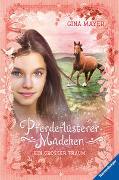 Cover-Bild zu Pferdeflüsterer-Mädchen, Band 2: Ein großer Traum von Mayer, Gina