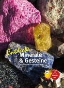 Cover-Bild zu Entdecke Minerale und Gesteine von Dreizler, Marlene