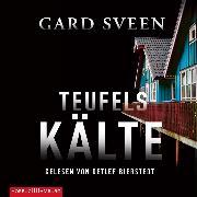 Cover-Bild zu Teufelskälte (Audio Download) von Sveen, Gard