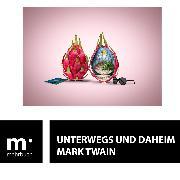 Cover-Bild zu Twain, Mark: Unterwegs und Daheim (eBook)