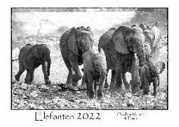 Cover-Bild zu Du Plessis, Claudia: ELEFANTEN - Kalender 2022 (A3 Format)