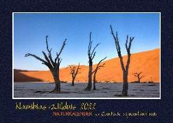Cover-Bild zu Du Plessis, Claudia: NAMIBIAS WILDNIS - Naturkalender 2022 (A3 Format)