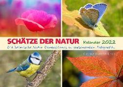 Cover-Bild zu Du Plessis, Claudia: SCHÄTZE DER NATUR - Kalender 2022 (A3 Format)