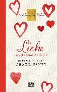 Cover-Bild zu Liebe - Letters of Note von Usher, Shaun (Hrsg.)
