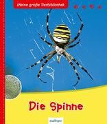 Cover-Bild zu Meine große Tierbibliothek: Die Spinne von Vallet, Anne