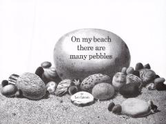 Cover-Bild zu Lionni, Leo: On My Beach There Are Many Pebbles