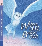 Cover-Bild zu Davies, Nicola: White Owl, Barn Owl