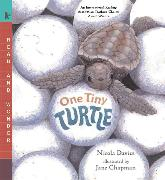 Cover-Bild zu Davies, Nicola: One Tiny Turtle