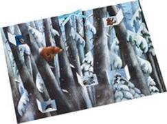 Cover-Bild zu Wilson, Henrike: Winter im Bärenwald Adventskalender