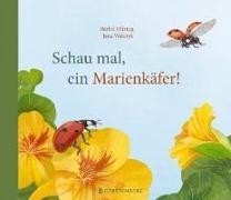 Cover-Bild zu Oftring, Bärbel: Schau mal, ein Marienkäfer!