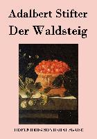 Cover-Bild zu Adalbert Stifter: Der Waldsteig