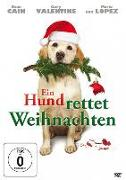Cover-Bild zu Gary Valentine (Schausp.): Ein Hund Rettet Weihnachten