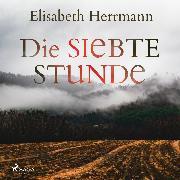 Cover-Bild zu Herrmann, Elisabeth: Die siebte Stunde: Joachim Vernau 2 - Kriminalroman (Audio Download)