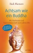 Cover-Bild zu Hanson, Rick: Achtsam wie ein Buddha