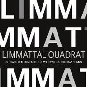 Cover-Bild zu Pfann, Thomas: Limmattal Quadrat