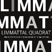 Cover-Bild zu Pfann, Thomas: Limmattal Quadrat (eBook)