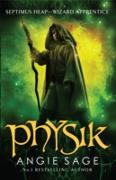 Cover-Bild zu Sage, Angie: Physik (eBook)
