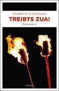 Cover-Bild zu Brandstätter, Lisa: Treibts zua!