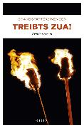Cover-Bild zu Wenger, Clemens: Treibts zua! (eBook)