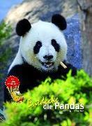 Cover-Bild zu Dungl, Eveline: Entdecke die Pandas