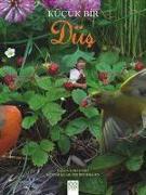 Cover-Bild zu Kücük Bir Düs von Evert, Lori