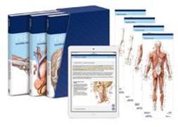 Cover-Bild zu PROMETHEUS LernPaket Anatomie von Schünke, Michael (Beitr.)