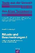 Cover-Bild zu Rituale und Beschwörungen I (eBook) von Römer, Willem H. Ph.