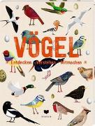 Cover-Bild zu VÖGEL von roots (Überarb.)