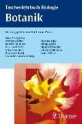 Cover-Bild zu Taschenlehrbuch Biologie: Botanik von Munk, Katharina (Hrsg.)