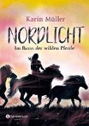 Cover-Bild zu Müller, Karin: Nordlicht, Band 02 (eBook)