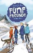 Cover-Bild zu Blyton, Enid: Fünf Freunde im alten Turm (eBook)