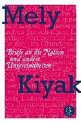 Cover-Bild zu Briefe an die Nation von Kiyak, Mely
