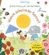 Cover-Bild zu Daynes, Katie: Erstes Aufklappen und Verstehen: Warum scheint die Sonne?
