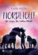 Cover-Bild zu Müller, Karin: Nordlicht, Band 03 (eBook)