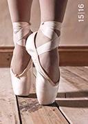 Cover-Bild zu Feelings daily A6 Ballet 2015/2016