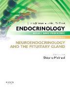 Cover-Bild zu Endocrinology Adult and Pediatric: Neuroendocrinology and the Pituitary Gland von Melmed, Shlomo