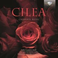 Cover-Bild zu Chamber Music
