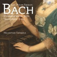 Cover-Bild zu Chamber Music with Transverse Flute