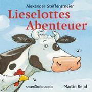 Cover-Bild zu Lieselottes Abenteuer von Steffensmeier, Alexander