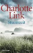 Cover-Bild zu Sturmzeit