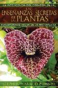 Cover-Bild zu Las enseñanzas secretas de las plantas