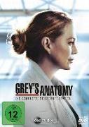 Cover-Bild zu Grey's Anatomy - 17. Staffel