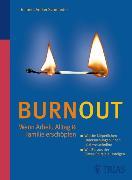 Cover-Bild zu Burnout (eBook) von Schmiedel, Volker