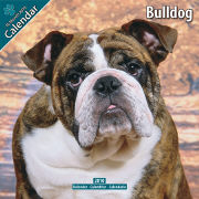 Cover-Bild zu Bulldog 2010