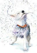 Cover-Bild zu Postkarten Hund